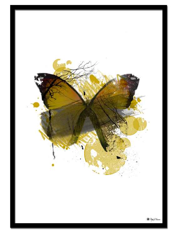"Yellow Butterfly poster | Artistic art print of a yellow butterfly. Match with ""Yellow Mohawk"", ""Ebony & Ivory"", ""Hustle"" or other yellow prints."