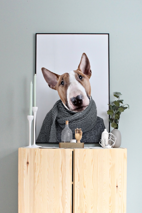 People of Tomorrow | Bill the Bull Terrier