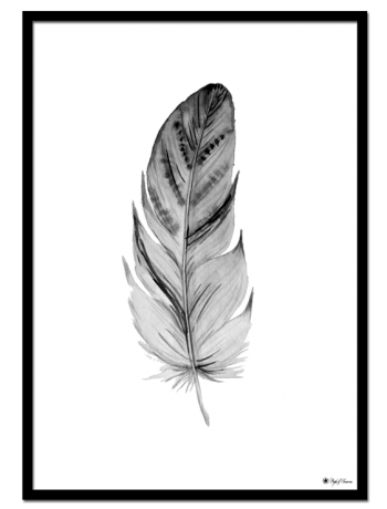 Feather poster | Drawing of a grey feather.
