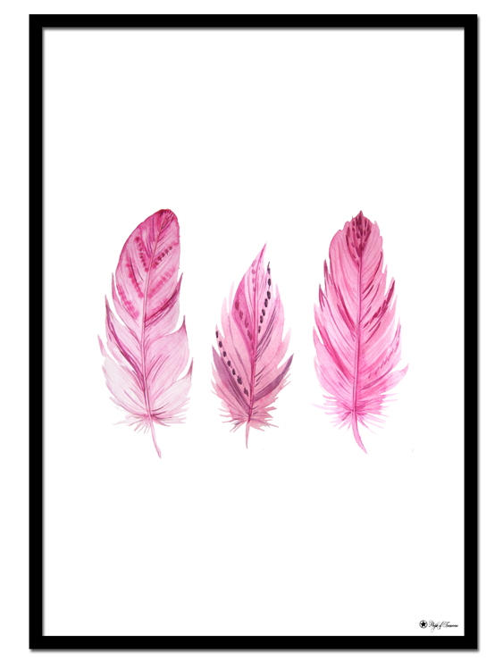 Pink Feathers poster | Drawing of three pretty pink feathers.
