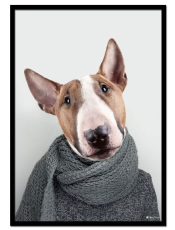 Bill The Bull Terrier
