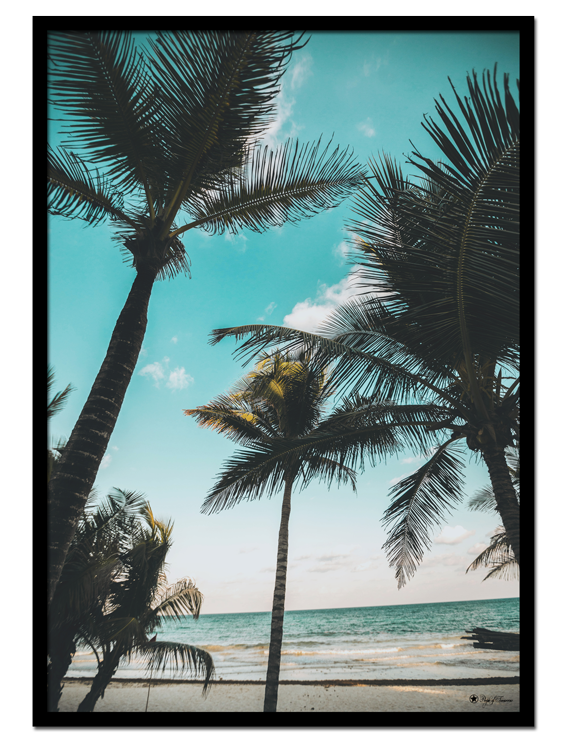 "Palm Trees poster | Photo art poster of palm trees and a clear, blue sky. Match with ""Beach Waves"" and ""Surf"" for the perfect gallery wall."