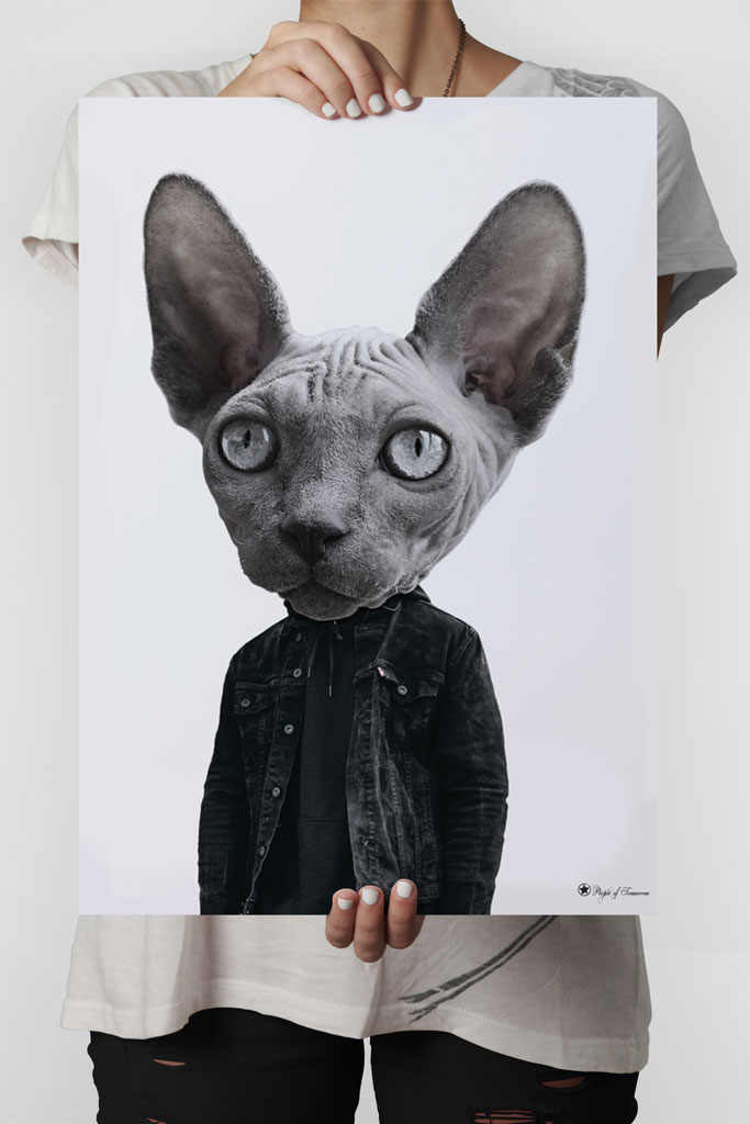 Mr. Sphynx poster | Funny poster of a Sphynx cat head on human body.