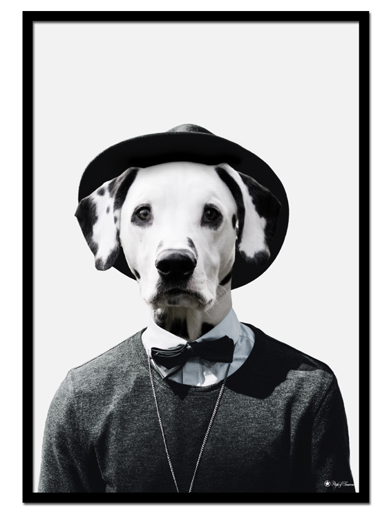Nick the Dalmatian poster |Funny poster of a dog's head on human body.