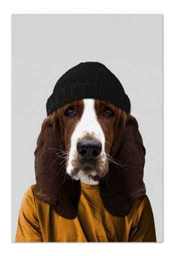 Fred the Basset Hound – Art Card