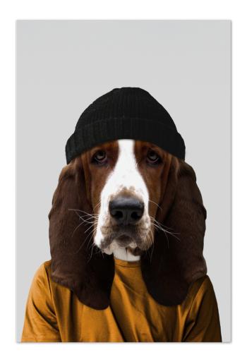 Fred the Basset Hound Art Card | Art doesn't have to be big to make a big impression. Our art cards are about the size of postcards, but they'll brighten up any room with their eye-catching designs. With a selection of unique art work printed on high quality paper, these are a versatile type of art for all sorts of occasions.