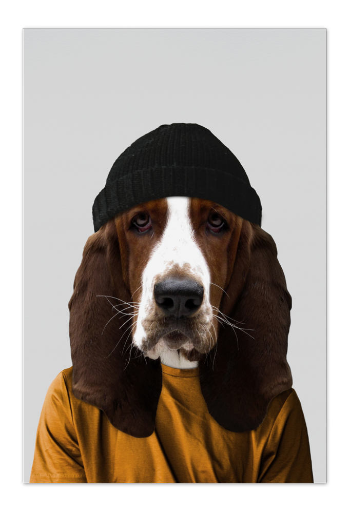 Fred the Basset Hound Art Card |Art doesn't have to be big to make a big impression. Our art cards are about the size of postcards, but they'll brighten up any room with their eye-catching designs. With a selection of unique art work printed on high quality paper, these are a versatile type of art for all sorts of occasions.