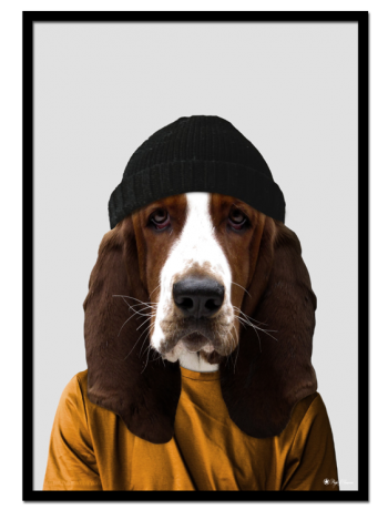 Fred the Basset Hound poster | Funny poster of a basset hound dressed as a human.
