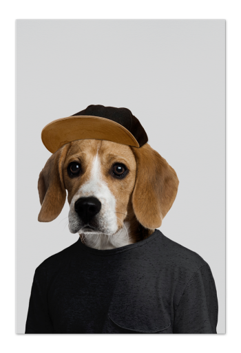 Joey the Beagle Art Card | Art doesn't have to be big to make a big impression. Our art cards are about the size of postcards, but they'll brighten up any room with their eye-catching designs. With a selection of unique art work printed on high quality paper, these are a versatile type of art for all sorts of occasions.