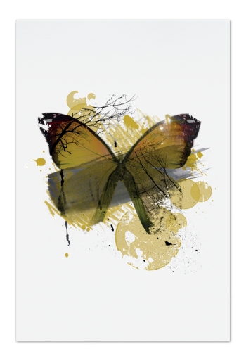 Yellow Butterfly – Kunstkort