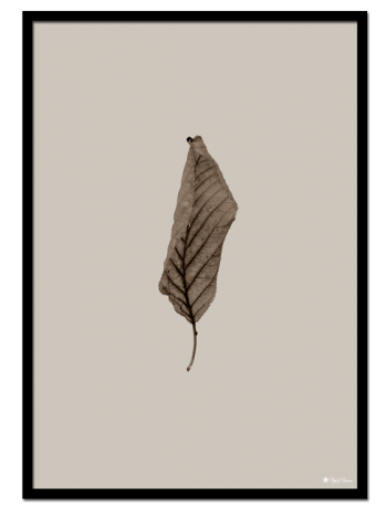 Brown Leaf poster | Minimalistic print of a brown leaf on a light beige background.
