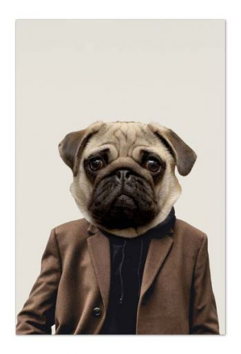 Otis the Pug – Art Card