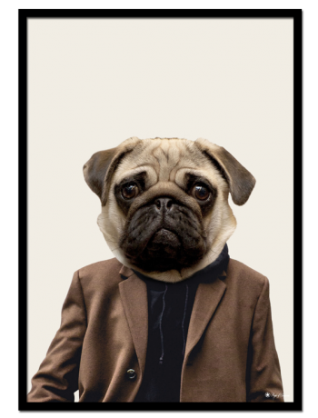 "Otis the Pug poster | Poster of a pug dressed as a human. This poster is part of the ""Dogs Dressed as Humans"" series."