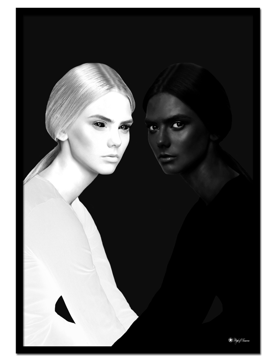 Yin Yang Twins poster | Artistic photo art of two women in white and black.