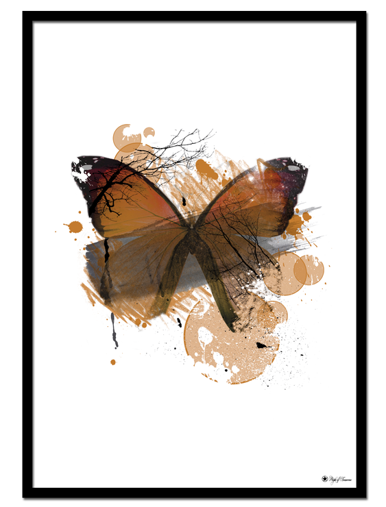 Orange Butterfly poster | Graphic poster of a beautiful, orange butterfly.