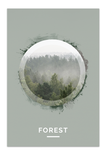 Forest Art Card | Art doesn't have to be big to make a big impression. With a selection of unique art work printed on high quality paper, these are a versatile type of art for all sorts of occasions
