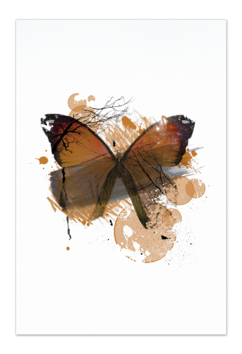 Orange Butterfly Art Card | Art doesn't have to be big to make a big impression. With a selection of unique art work printed on high quality paper, these are a versatile type of art for all sorts of occasions